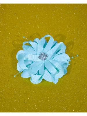 Резинка для волос Bizon. Цвет: зеленый