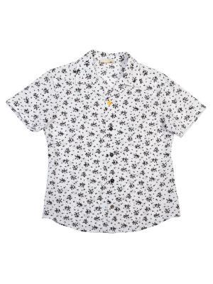 Рубашка Stillini. Цвет: черный