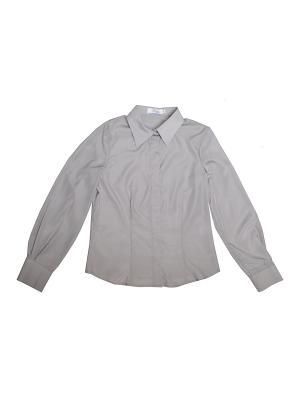 Блузка Born. Цвет: серый