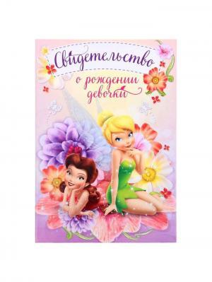 Обложка для свидетельсва о рождении Disney. Цвет: салатовый, розовый, фиолетовый