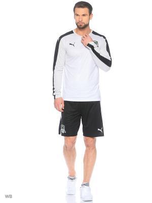 Шорты FK Krasnodar Shorts Promo Puma. Цвет: черный, белый