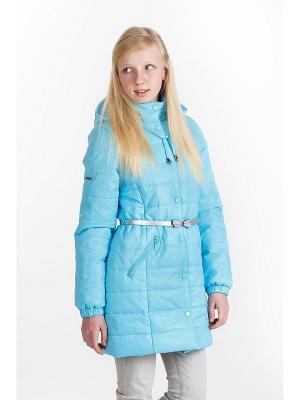 Пальто для девочки NIKASTYLE. Цвет: голубой
