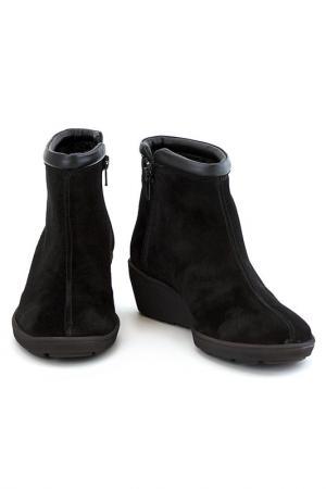 Ботинки Elena. Цвет: чёрный
