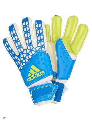 Перчатки ACE ZONES PRO  SHOBLU/WHITE/SESOSL Adidas. Цвет: зеленый, синий, белый