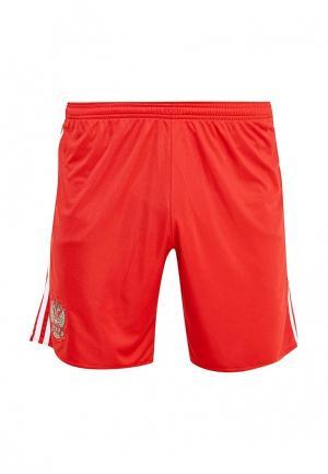 Шорты спортивные adidas Performance. Цвет: красный