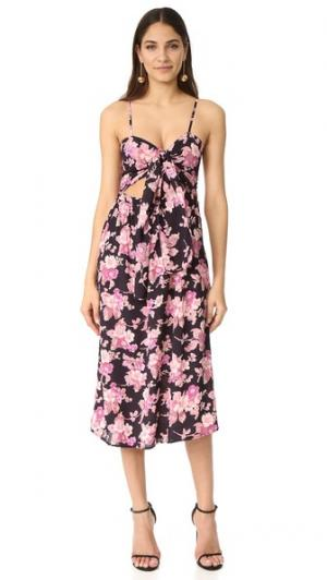 Миди-платье Faith Flynn Skye. Цвет: черные цветы