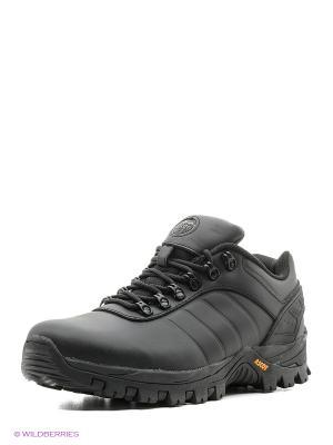 Спортивные ботинки Ascot. Цвет: черный