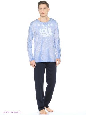 Комплект одежды Vienetta Secret. Цвет: темно-серый, голубой