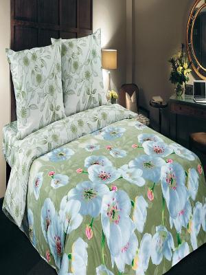Комплект постельног белья Арт Постель. Цвет: зеленый