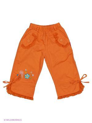 Брюки DAMY-M. Цвет: оранжевый