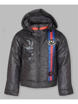 Куртка Arista. Цвет: серый