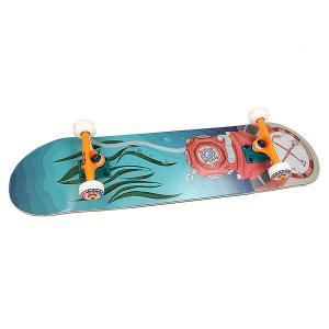 Скейтборд в сборе  Vodolaz Blue 32 x 8.125 (20.6 см) Nord. Цвет: голубой