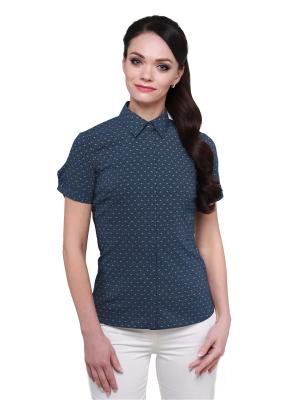 Блузка BLAUZ. Цвет: синий, белый