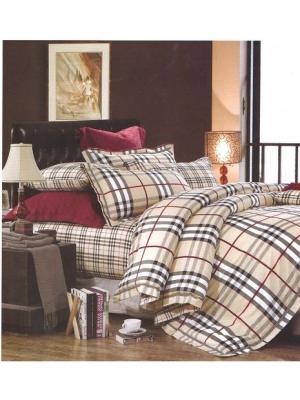 Комплект постельного белья ROMEO AND JULIET. Цвет: темно-коричневый, светло-коричневый