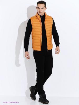 Жилет GEOX. Цвет: светло-оранжевый