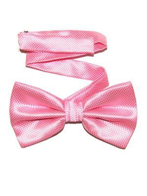 Бабочка Lola. Цвет: розовый
