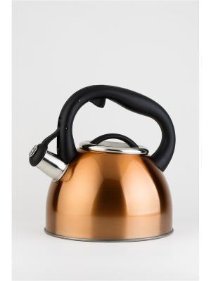 Чайник BONN 2,5 л со свистком из нержавеющей стали Koch Systeme. Цвет: светло-оранжевый