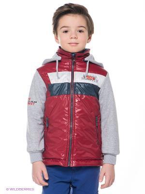 Куртка Goldy. Цвет: бордовый, белый, темно-синий, серый