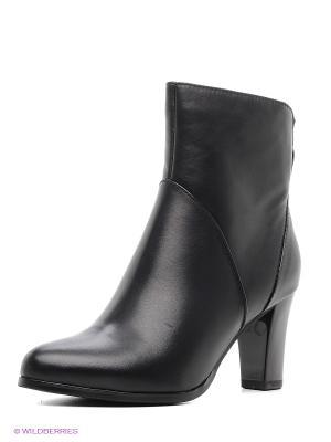 Ботинки Clotilde. Цвет: черный