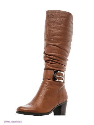 Сапоги Moda Donna. Цвет: коричневый