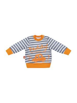 Свитшот NewStar. Цвет: серый, молочный, оранжевый