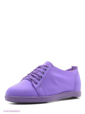 Кеды Vitacci. Цвет: фиолетовый