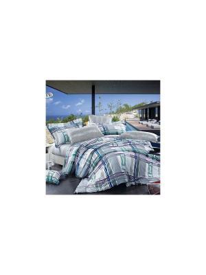 Постельное белье Kvadro 1,5 сп. Amore Mio. Цвет: серый, фиолетовый, синий