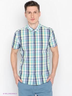 Рубашка SAVAGE. Цвет: бирюзовый, желтый, синий