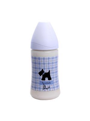 Бутылочка для кормления Suavinex. Цвет: сиреневый, темно-серый