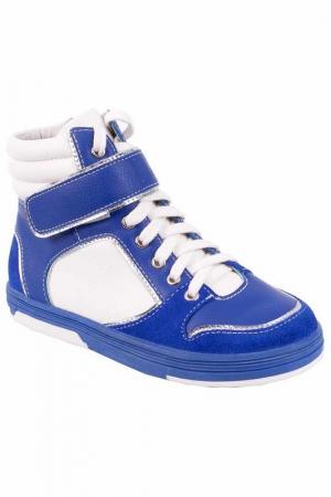 Ботинки Gulliver. Цвет: синий, белый