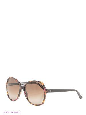 Солнцезащитные очки GUCCI. Цвет: черный, рыжий
