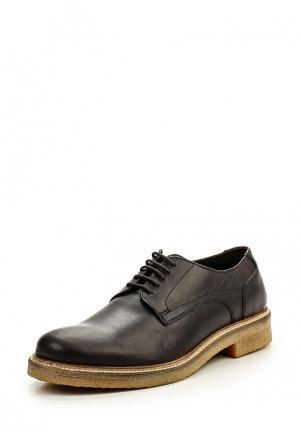 Туфли Base London. Цвет: коричневый