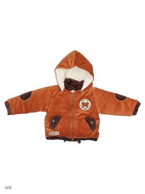 Велюровая курточка на синтепоне Happy Bear. Цвет: коричневый