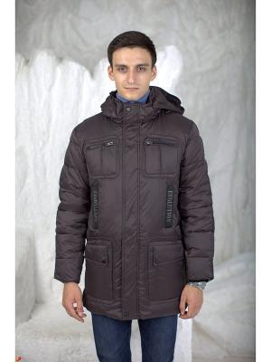 Куртка EVOLUTION. Цвет: коричневый
