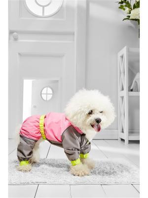 Дождевик для собак Nothing but Love. Цвет: серый, салатовый