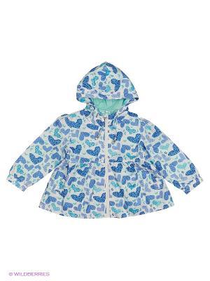 Куртка-ветровка Born. Цвет: бирюзовый