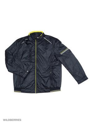 Куртка Malinardi. Цвет: серый