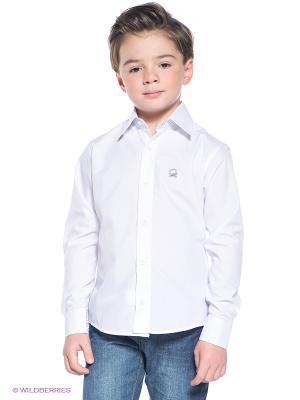Рубашка Ilgaz kids. Цвет: белый, синий