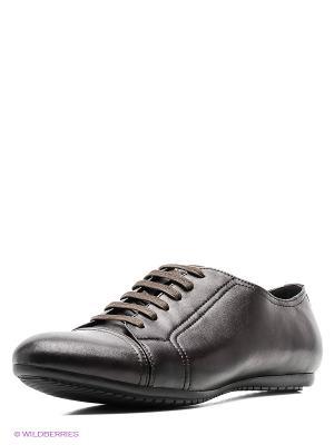 Туфли Mario Ponti. Цвет: темно-коричневый