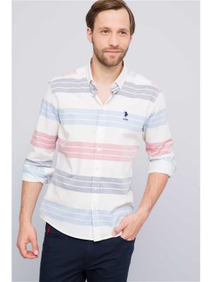 Рубашка U.S. Polo Assn.. Цвет: молочный, красный, синий