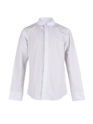 Рубашка Vitacci. Цвет: белый