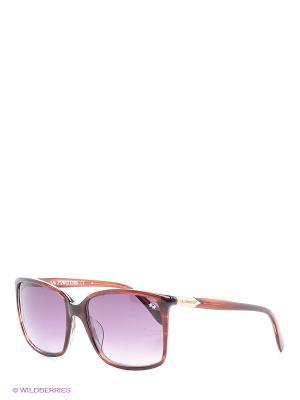 Солнцезащитные очки LM 536S 04 La Martina. Цвет: бордовый