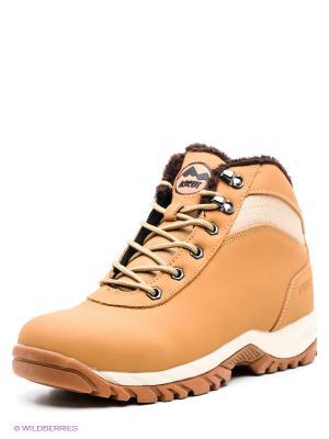 Ботинки Ascot. Цвет: бежевый