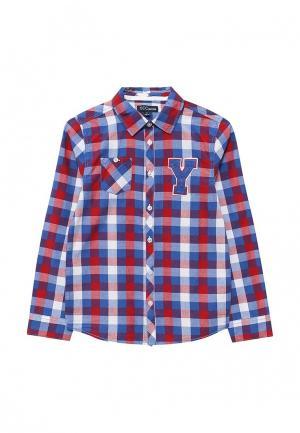 Рубашка Z Generation. Цвет: разноцветный