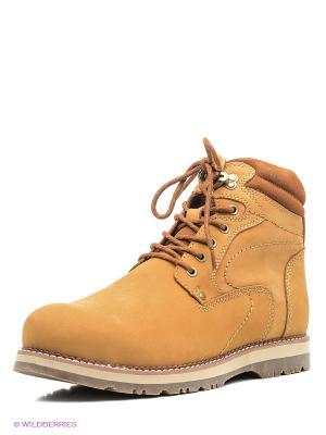 Ботинки Shoiberg. Цвет: светло-коричневый, бежевый