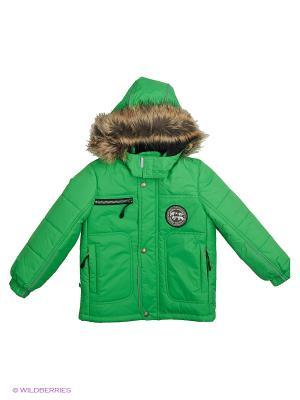 Куртки Kerry. Цвет: зеленый