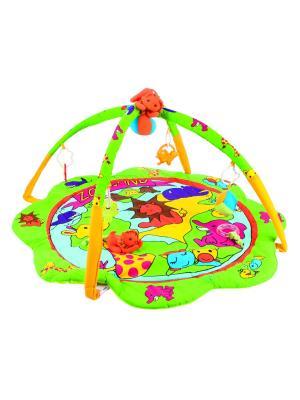 Коврик игровой - зоопарк, 0+ Canpol babies. Цвет: салатовый, голубой, красный