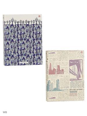 Комплект тетрадей на кольцах 160 листов, 2 штуки, дизайна. Графика Канц-Эксмо. Цвет: светло-бежевый, сиреневый