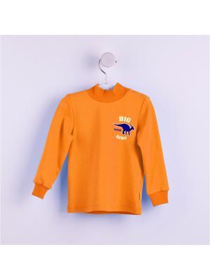 Свитшот БЕМБI. Цвет: оранжевый