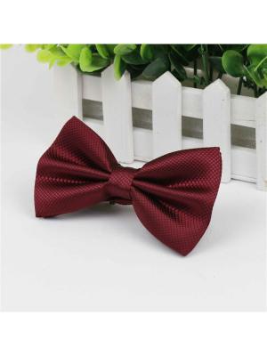 Галстук-бабочка Churchill accessories. Цвет: темно-красный,бордовый,красный